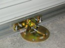 XTRA LOK 1A Roller Door Anchor