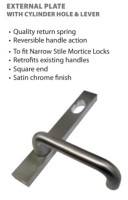 Lockton External Plate with Cylinder Hole & Lever